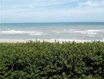 Hutchinson Island Condo. for sale, 7430 S Ocean DR 321-B, Jensen Beach FL 34957